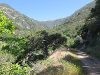 The trail is shaded in the morning in some parts.