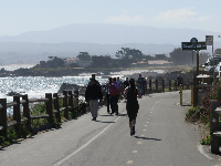 The bike path that leads from Lovers Point Park to the Monterey Bay Aquarium.