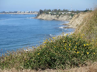 View toward UCSB.