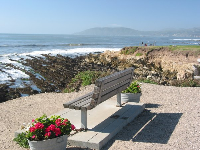 Idyllic bench above the tide pools.