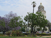 City Hall, as seen from Beverly Gardens Park.