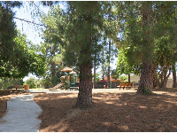 The playground and pine trees that make plenty of pine cones for playing with.