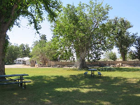 Picnic tables in the shade.