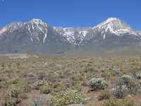 The desert with the Eastern Sierras towering above.