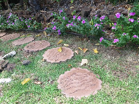 Cute stepping stones with animals engravings.