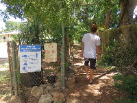 The beach access path and sign about green sea turtles.