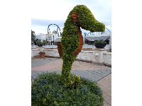 Seahorse topiary.
