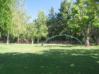 A huge archway filled with swings, and a second one with baby swings.