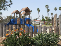 The playground, palm trees, and bird of paradise flowers.