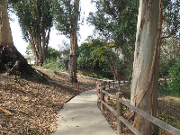 Path leading down to the park.