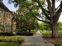 Summer evening stroll at Duke campus.