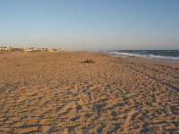 Oxnard Beach is wide and there's plenty of soft sand.
