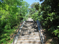 Stairs leading from Sarah P. Duke Gardens to campus.