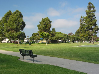Bench, walkway, large lawn, and shade trees.