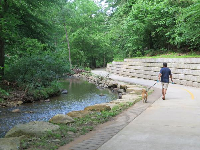 Walking a dog along Bolin Creek by Umstead Park.