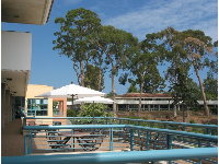 Chairs and tables on the upstairs UCen balcony. Eucalyptus trees behind, near the freshman cafeteria.