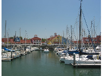 Yachts docked at Shoreline Village.