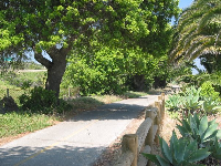 The bike path, as it passes Goleta Beach.