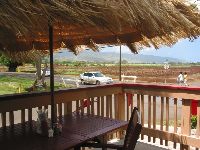 The grass shack outdoor area of Breakers Cafe. Taro fields in the background. Taro has replaced sugar as the main agricultural industry on the North Shore.