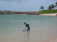 A boy plays with a bucket in the calm water at Ko Olina Beach.