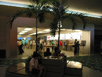 The Apple Store and a potted indoor palm.