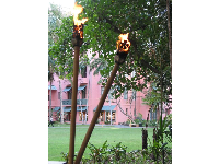 "Torches and the ""pink hotel"" as seen from the outdoor garden area of the Cheesecake Factory."