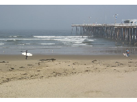 A surfer walks beside the pier.