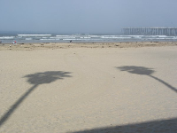 The sun breaks through and makes cute shadows on the white sand.