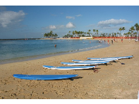 Surfboards lined up on the shore.