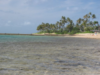 Looking west toward the Kahala mansions, from Waialae Beach Park.