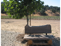 Cute bench for photos of your little berry pickers.