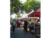 Strolling along in the shade at the State Street Farmers Market.