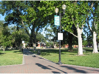 City Park walkway and lamppost.
