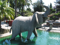 Elephant sculpture and water everywhere!