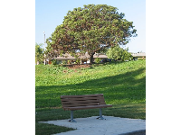 Bench at the park and neighborhood behind.
