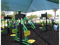 Workout playground for adults and older kids.