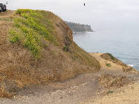 The beginning of the trail down to Bluff Cove.