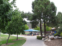 Cappello Playground, a lovely setting with the trees and the hill behind.