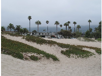 Looking past the dunes toward Linden Avenue.