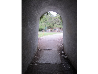 Tunnel that leads to Berkeley Rose Garden.