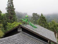 Grasshopper statue on a rooftop!