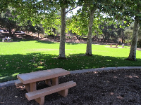 Child-sized picnic table and bright green lawn beyond.