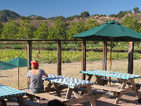 Picnic area at Avila Valley Barn.