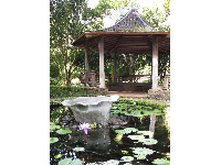 Lily pond and gazebo.