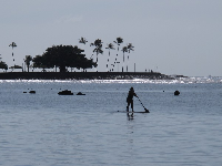 Stand up paddler with Magic Island peninsula behind.
