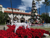 Honolulu Hale (city hall) is colorful at Christmas time.