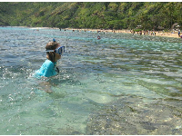 Clear water for some great snorkeling!