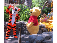 Pooh and Tigger greet fans in Critter Country.