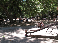 Playground and shady picnic areas behind.