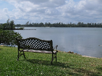 Bench with serene view.